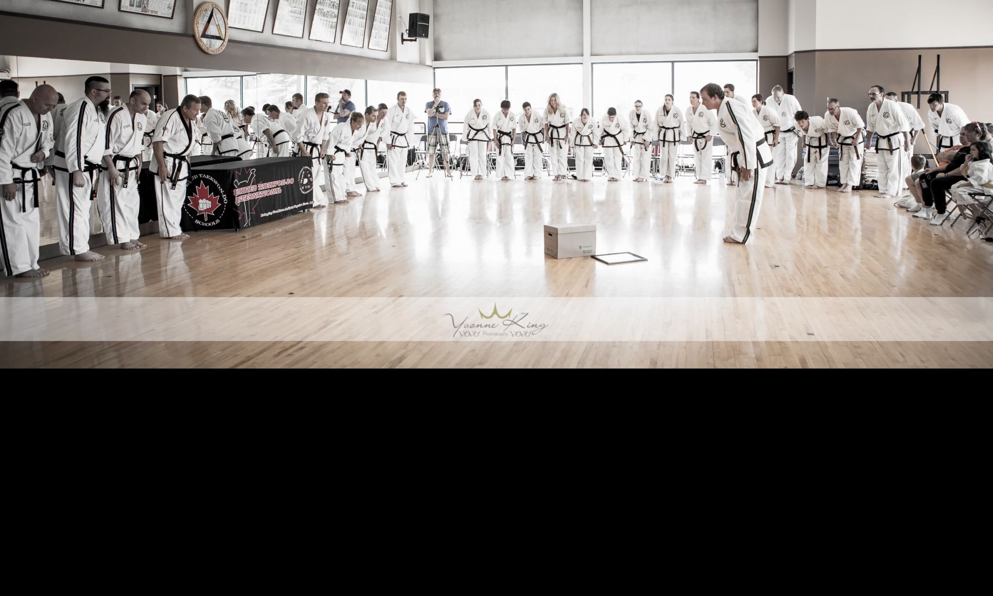 Unified TaeKwon-Do International