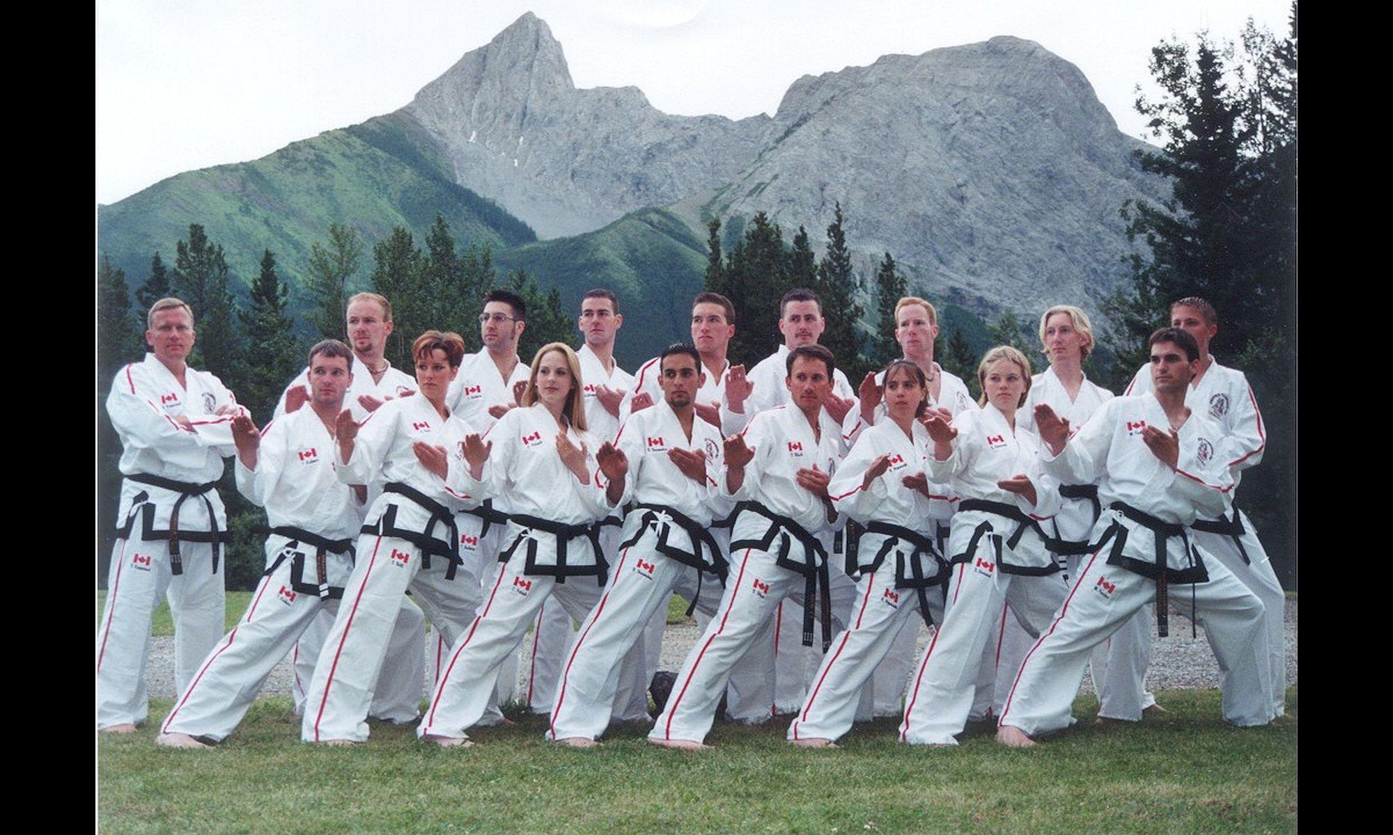 Unified TaeKwon-Do International